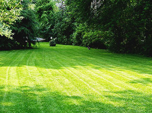 lawn-mowing
